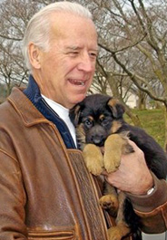 184x265_joe_biden_puppy