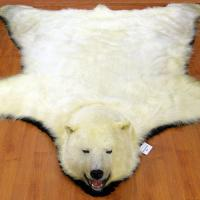 Polar bear hide