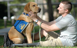 Veteranwithservicedog