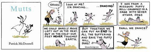 Mutts Cartoon - Missouri Puppy Mill