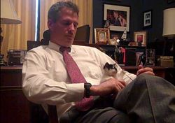 U.S. Senator Scott Brown with his office's new cat
