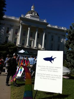 Shark Day at the California Legislature