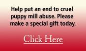 Appeal_text_box_puppymills