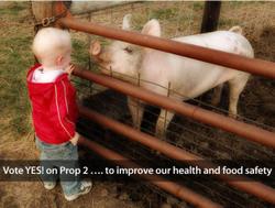 Prop_2_health