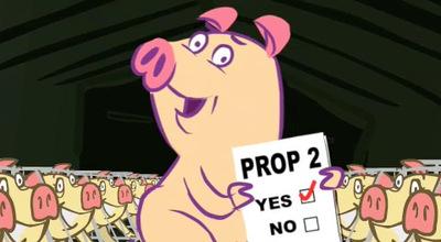 Pig_2